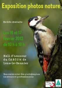PIC expo photo affiche 2