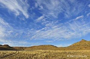 La région du Karoo est un semi-désert très peu peuplé où la seule activité économique viable est l'élevage extensif de moutons.