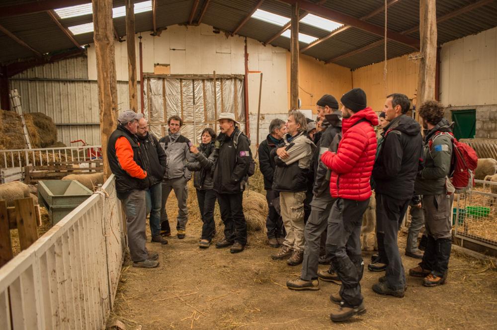 Le groupe des stagiaires de l'ATEN dans une exploitation ovine jurassienne. Photo : P. Raydelet.