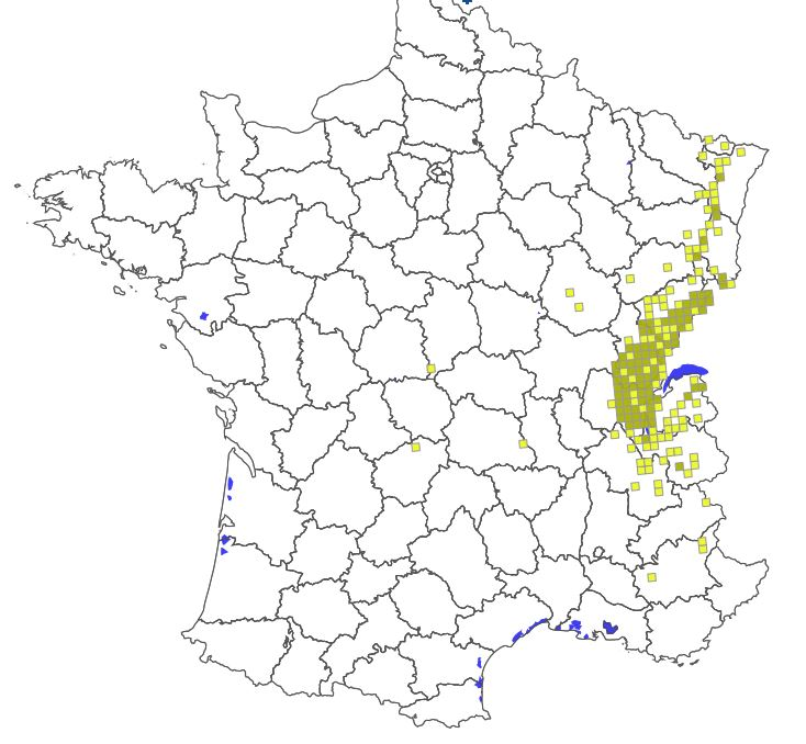 Carte-répartition-du-LYNX-en-France-2018-Source-ONCFS