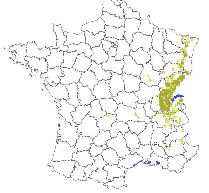 Carte-répartition-du-LYNX-en-France-2018-Source-ONCFS